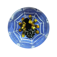 """Фишки для нард из оргстекла """"Маленькие пауки"""" купить в интернет-магазине Нардлайн"""