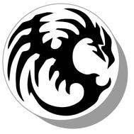 Фишки для нард из оргстекла Драконы #14