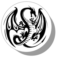 Фишки для нард из оргстекла Дракон #15